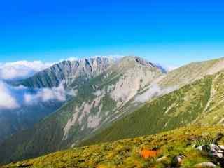 太白山蓝天白云绿色风景壁纸电脑桌面