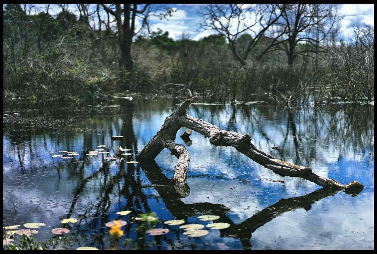 吴哥窟唯美湖面风景图片壁纸