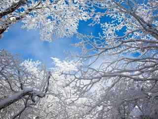 小清新山间雪景桌面壁纸