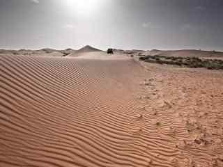 荒凉的沙漠风景壁纸