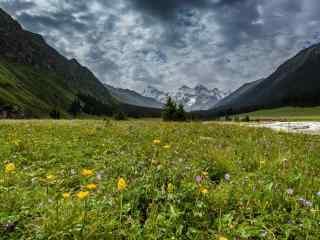 天山山谷优美的自然风景图片桌面壁纸