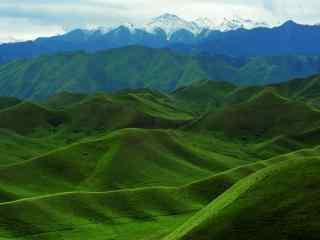 天山山脉绿色风景图片护眼壁纸电脑桌面
