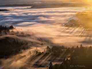 唯美的日出晨雾自然风景桌面壁纸