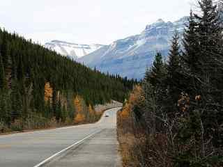 美丽的加拿大秋季