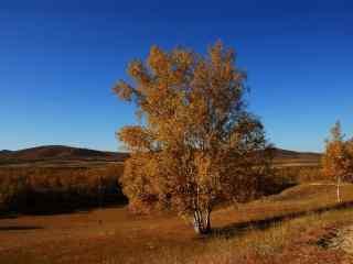 蓝天碧水的深秋风