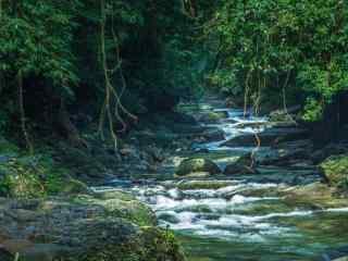 秀美的自然风景护