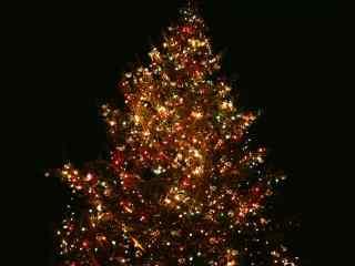 唯美的圣诞树风景图片桌面壁纸