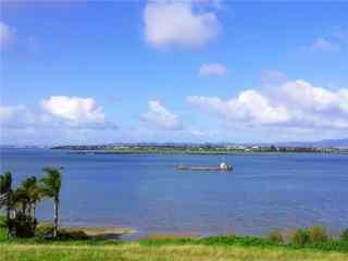 新西兰的海滨农场风景图片壁纸