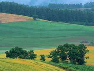 美丽的郊外农场风