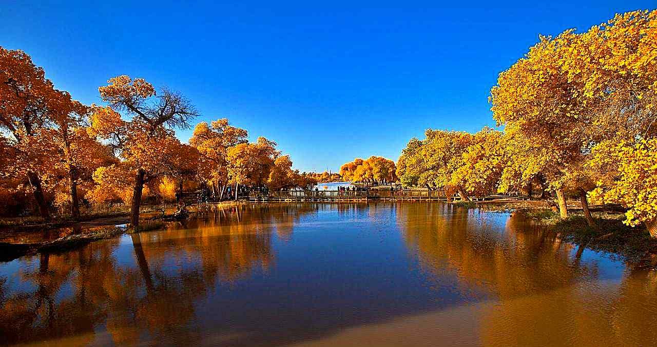 塔里木河风景图片桌面壁纸