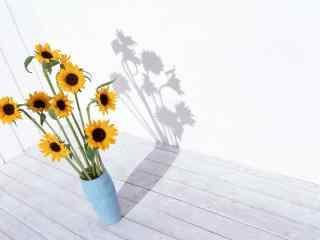 小清新花卉植物文