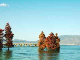 洱海唯美湖边风景