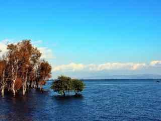 洱海清澈湖面风景图片高清桌面壁纸