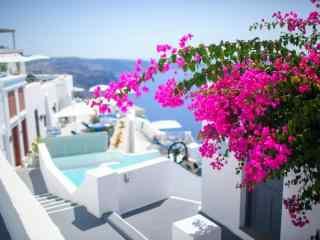 圣托里尼花朵小巷美丽风景图片高清桌面壁纸