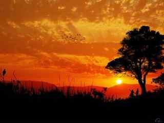火红唯美的夕阳风景图片