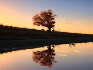 唯美落日夕阳下河
