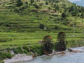 清新的山水田园图片