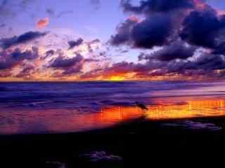 灿烂的大海晚霞风景图片
