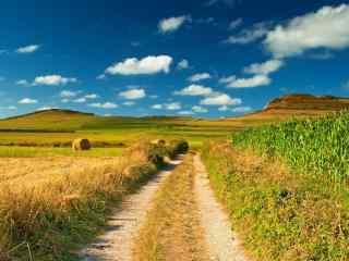清新自然的乡间田园风景壁纸