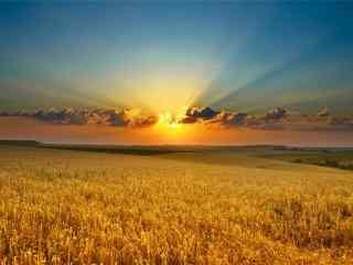 唯美的田园落日风景图片