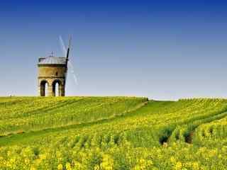 小清新绿色田园风景护眼壁纸