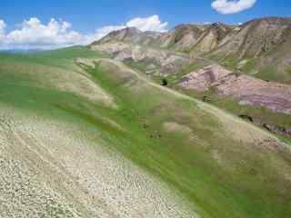 唯美草原风景图片