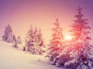 雪山上唯美的粉色日出风景图片高清桌面