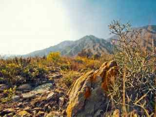 秋季贺兰山脉风光图片