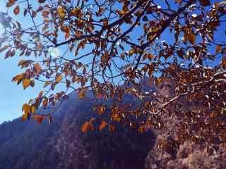 贺兰山脉深秋唯美风景图片