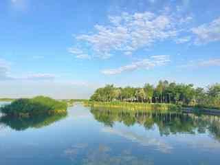 春季沙湖风景图片高清桌面壁纸