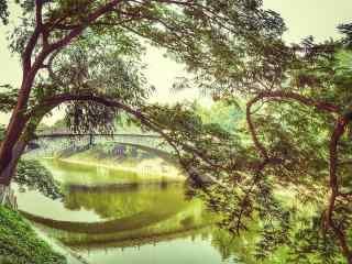 小清新赵州桥风景图片