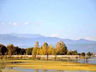 春天洱海唯美小清新风景图片