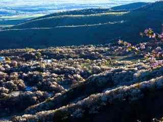 美丽河谷鲜花风景高清桌面壁纸