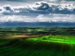 绮丽的大草原牧羊风景壁纸