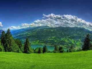 绿色草原风景护眼