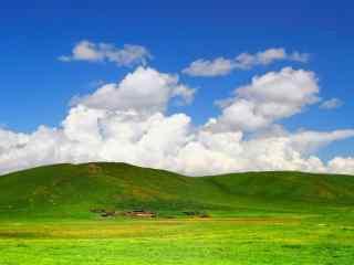 小清新绿色草原护
