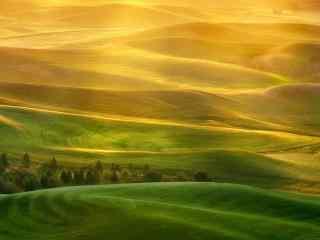 清新草原风景图片