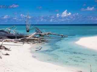 唯美小清新海边沙