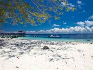 夏日浪漫海边沙滩
