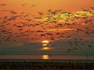 夕阳下洞庭湖上唯美风景壁纸