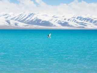 雪山下的蔚蓝的纳木错湖桌面壁纸