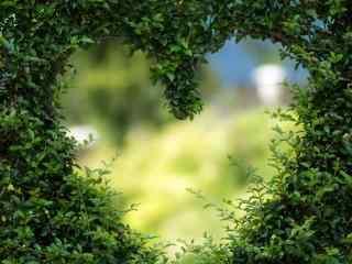 绿色爱心风景高清壁纸