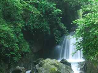 峨眉山树林间的瀑