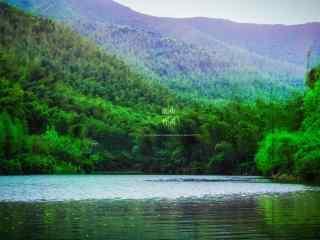 绿色护眼南山竹海河流桌面壁纸