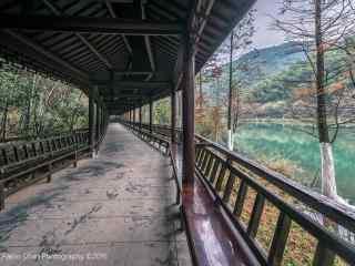 南山竹海复古的长廊桌面壁纸