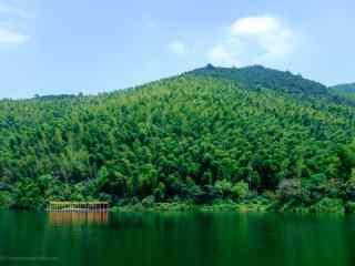 南山竹海的山水风光摄影图片