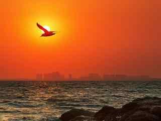 北戴河海面面上飞