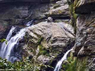 好看的庐山山涧瀑布桌面壁纸