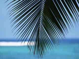 蓝色海南风光个性