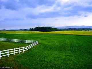 小清新大草原之上的蔚蓝天空桌面壁纸